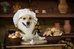 Dogs and garlic Toxic foods for dogs